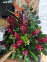 flowers Puriscal retiro 3